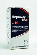 Heptavac P Plus 100Mls