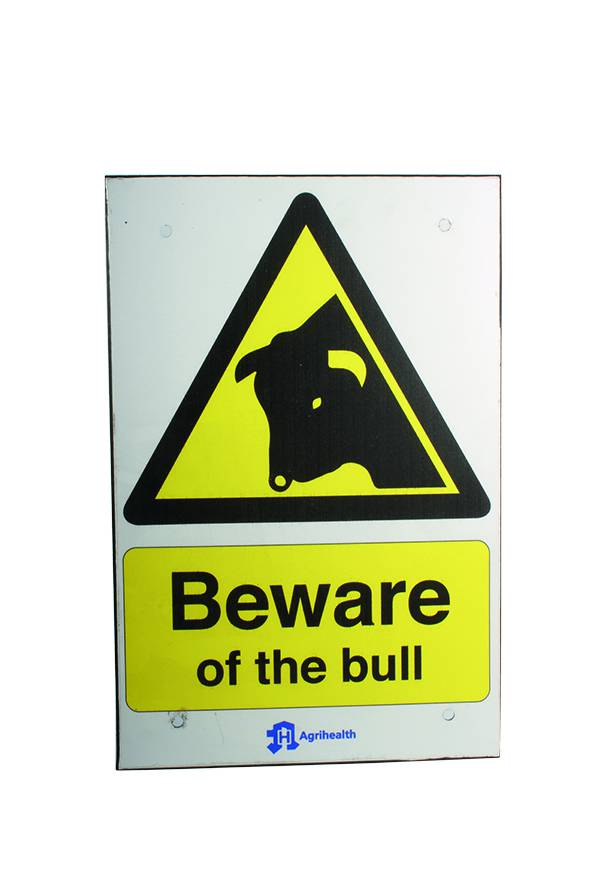 Beware Of Bull Sign - Small